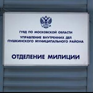Отделения полиции Ершова